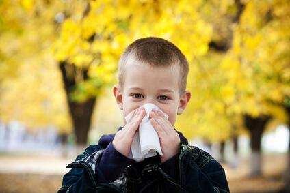 Globuli bei Allergien